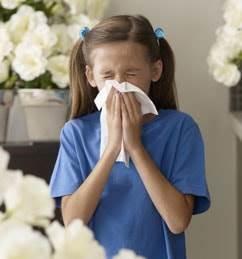 Fini les allergies